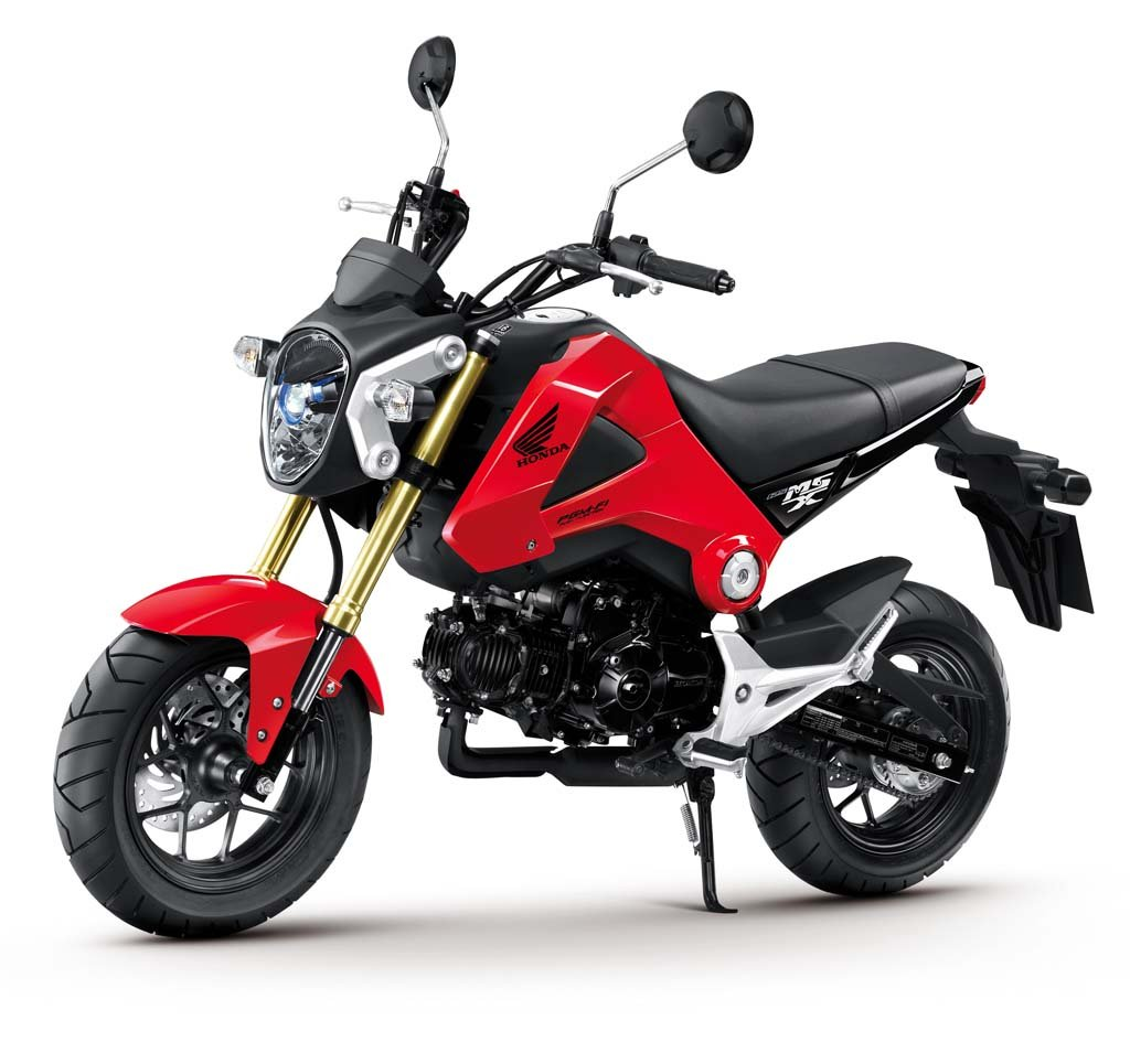 More Pictures of the 2013 Honda MSX125