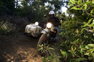 Ural Reports Continuing Sales Growth