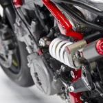 Pierobon Panigale lateral frame plate